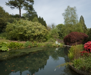 The Goldfish Pool at Chartwell, Westerham 2014 by Leslie Hossack