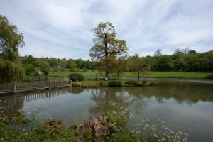 The Lake at Chartwell, Westerham 2014 by Leslie Hossack