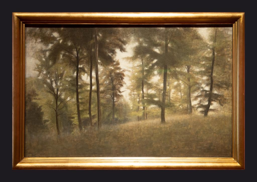 1904, Young Beech Forest, Frederiksvoerk by Leslie Hossack