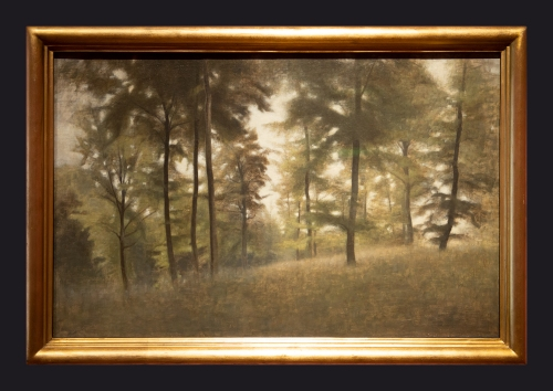 1904, Young Beech Forest, Frederiksvoerk by Leslie Hossack